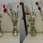 次亜塩素酸水溶液 切り花 長持ち 実験