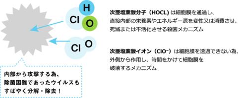 次亜塩素酸による除菌のイメージ
